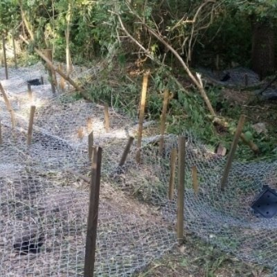Completed Installation Closing Badger Sett