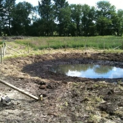 Created Wildlife Pond Habitat Restoration