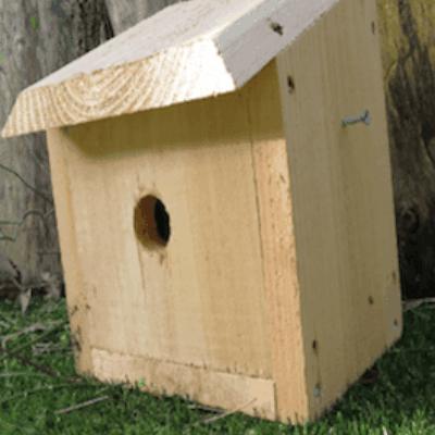 Es Standard Bird Box Habitat Enhancement