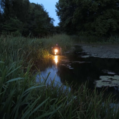 Gcn Survey Torching Method Great Crested Newt Survey