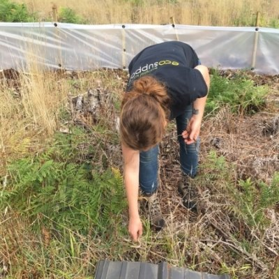 Releasing Slow Worms Reptile Mitigation Survey