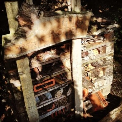 Bug Hotel Insect Hotel