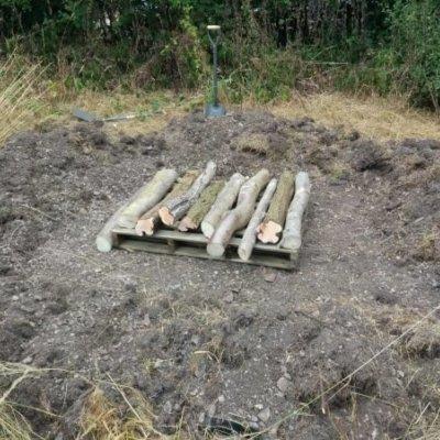 Constructing Reptile Hibernaclum