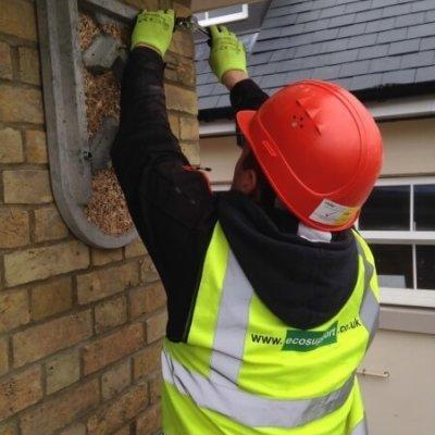 Installing Bat Box On New Development Ecosupport Bat Mitigation