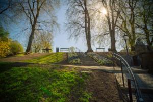 Bilde av park om sommeren.