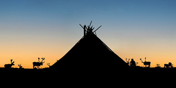 NEW: Mongolian Camp at Sunset