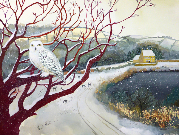 Winter Landscapes (mixed pack)