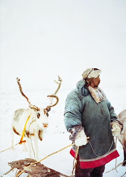 Chukchi Herder & Reindeer