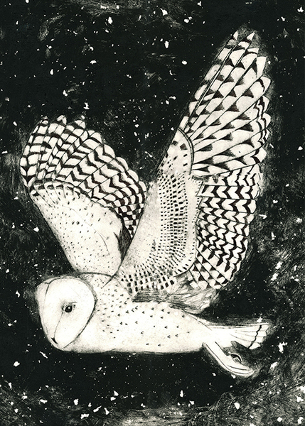 Barn owl cards