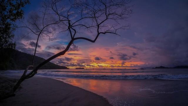 GoCode sunset