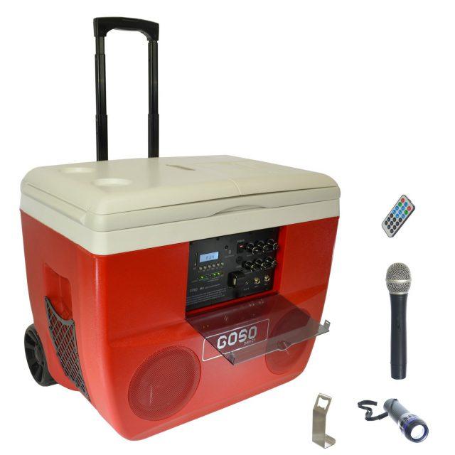 The Karaoke Cooler