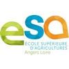 2ème édition de l'événement La Petite Pierre, à l'ESA Angers