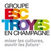 INBA, Ecole Internationale de Management - Groupe ESC Troyes
