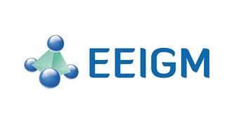 EEIGM - École Européenne d'Ingénieurs en Génie des Matériaux