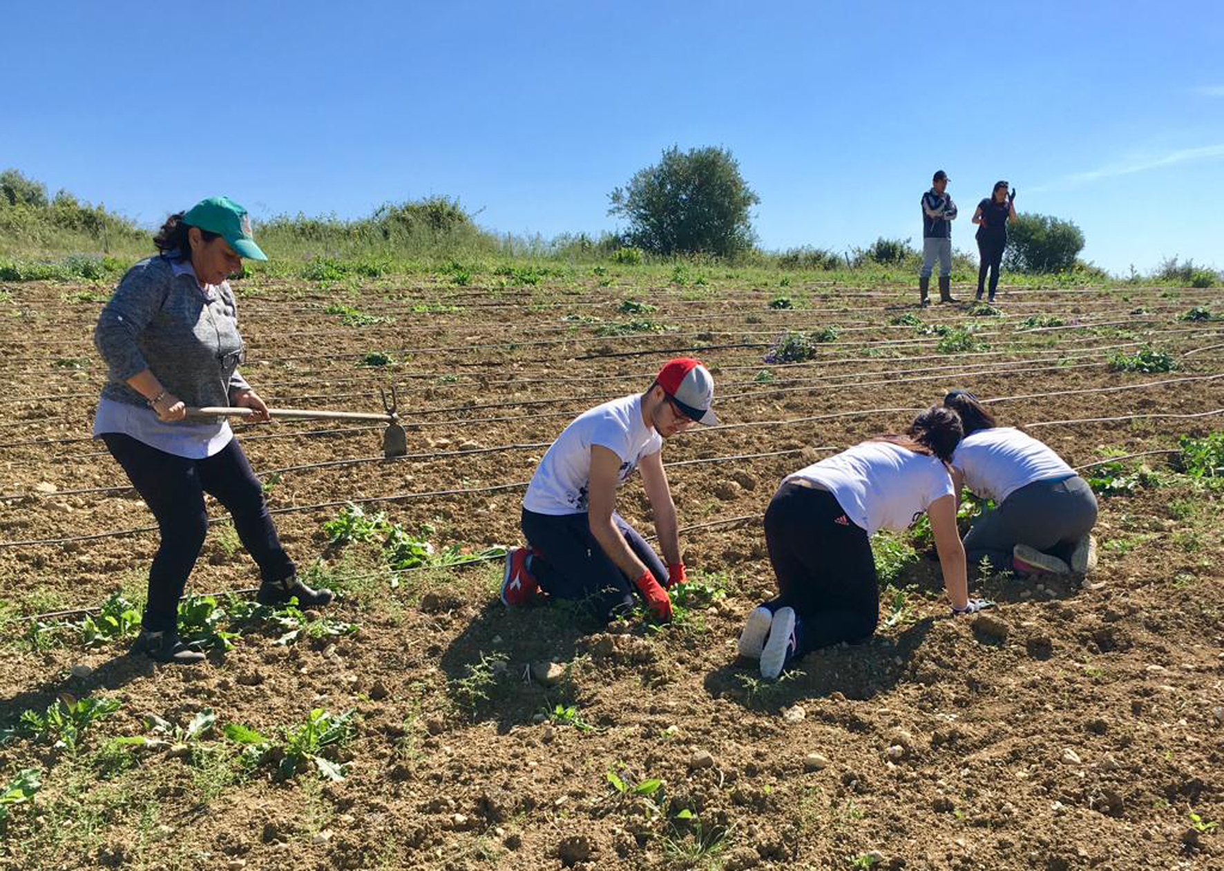 """Un precedente progetto del bando """"Coltiviamo Agricoltura Sociale"""" di Confagricoltura"""