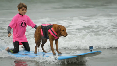 Superpower Dogs: Champion Surf Dog Helps Children Ride the Waves