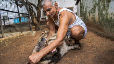 The Indian Doctors Who Created An Animal Ark