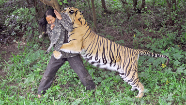 You're Grrrrrrreat: Man's Unbreakable Bond With Bengal Tiger