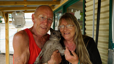 Couple Turn Home Into Kangaroo Sanctuary