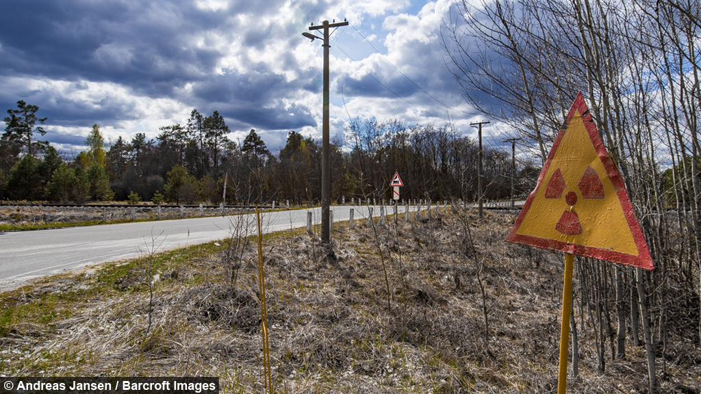 inside chernobyl the radioactive town nature has reclaimed