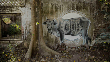 Abandoned Hindu monastery transformed by graffiti art