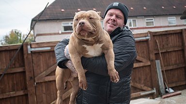 Meet Dios: The Bully Built Like A Bodybuilder