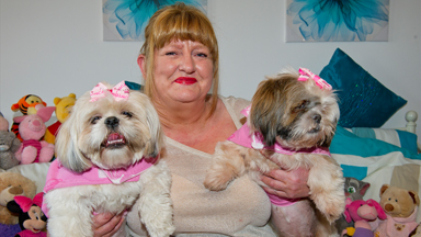 Pampered Pooches: Owner Spends £30,000 Spoiling Her Shih-tzu