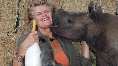 Saving the Black Rhino: Newborn Gives hope to the species