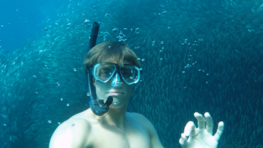 Come Dive With Me: Freediver takes a single breath into a cyclone of sardines