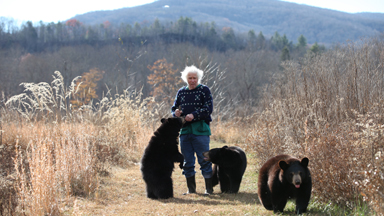 Man Goes On Hikes And Naps With His Five Black Bears