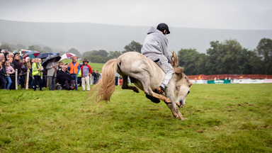 All Kicking Off: UK's Last Rodeo At Llanthony Valley Show
