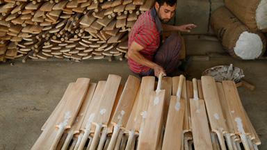 Bat-tling To Success: Inside A Kashmir Cricket Bat Factory