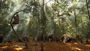 Baka tribe of central Africa struggle for survival