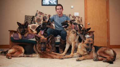 Leader Of The Pack: Dog Whisperer Walks With Six Dogs Untethered
