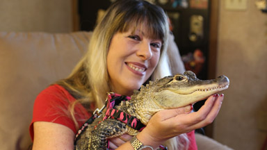 Painted Nails and Tutus: The World's Most Pampered Pet Alligator