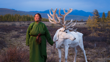 Photographer tracks nomadic family living with reindeers