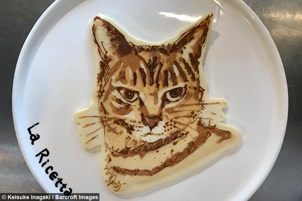 Chef Creates Flippin Great Animal Pancakes