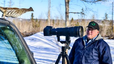 Feathered Friend: Man And Grouse Are Best Of Buddies