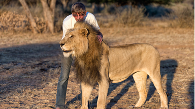 Mane Attraction: Man Cuddles and Kisses Huge Pet Lion