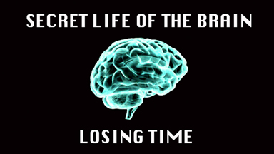 Losing Time | Secret Life Of The Brain