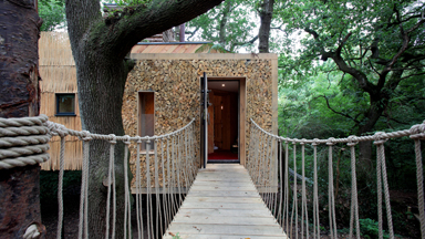 Take a look Inside The Luxury $200,000 Treehouse