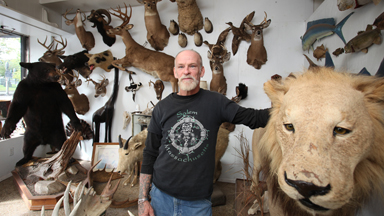 Memory Of The Hunt: New York City's Oldest Taxidermy Business