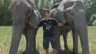 20 Year Old Acrobat Performs Tricks With His Elephant Family