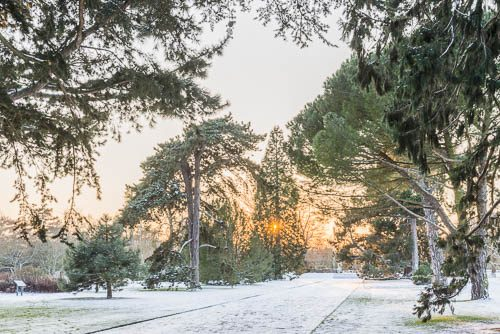 What's on this winter at CUBG