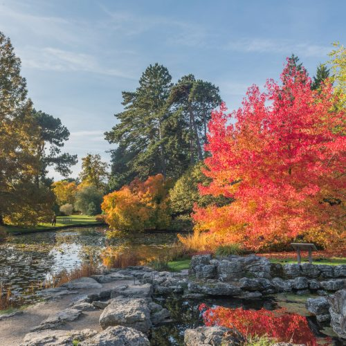 Purchase tickets for Cambridge University Botanic Garden