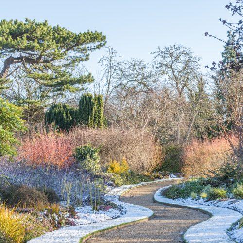 40 years of the Winter Garden