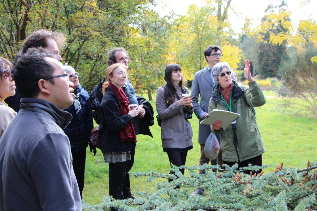 A tour of Cambridge University Botanic Garden tree collection.