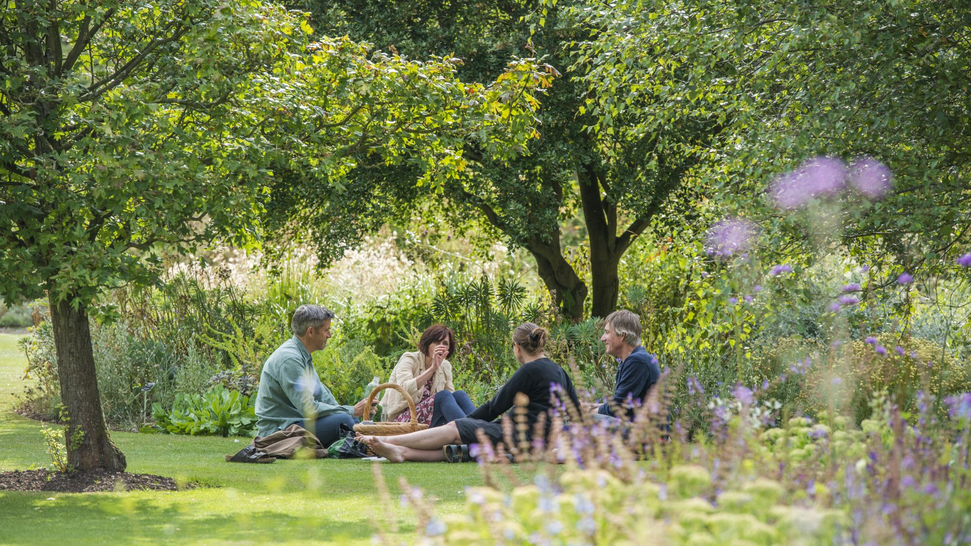 Visitors enjoying a picnic in the garden.