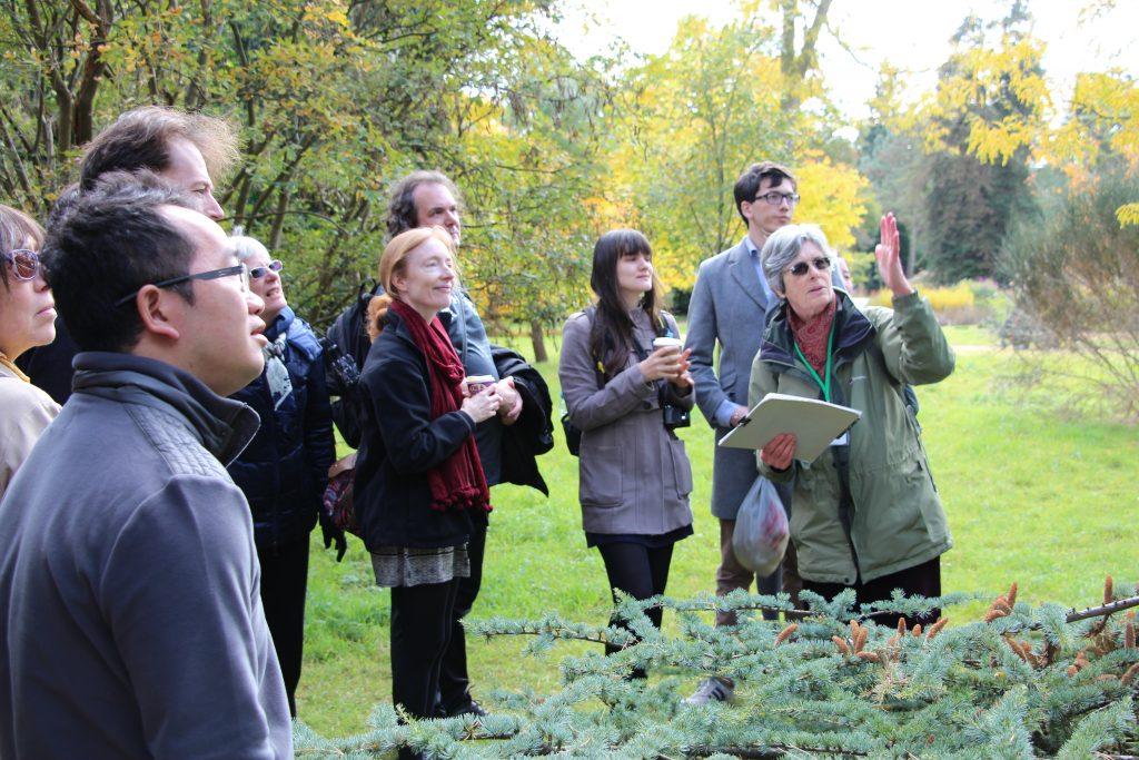 A tour of Cambridge University Botanic Garden tree collection.