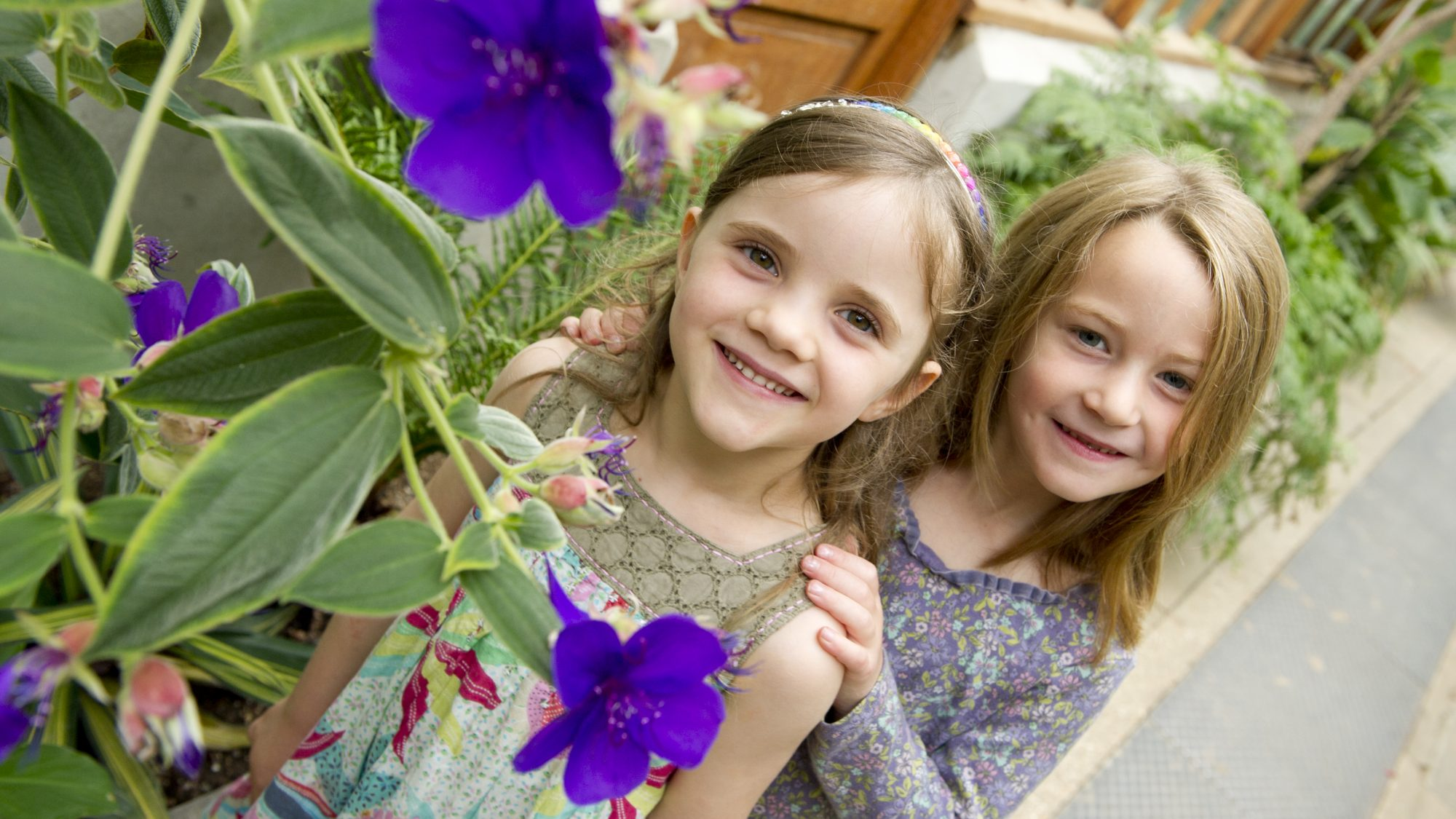 Two children and a purple flower plant